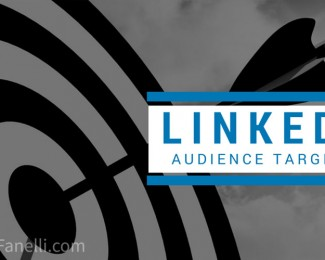 Linkedin Audience Targeting