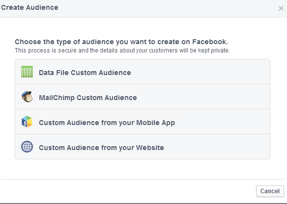 Fanelli_PowerEditor_Step5_Select Audience Type