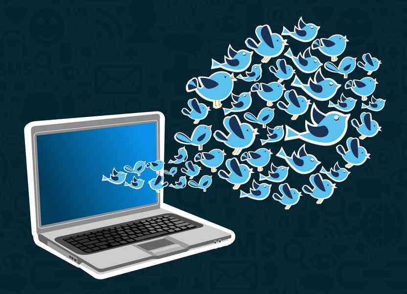 twitter tailored audience