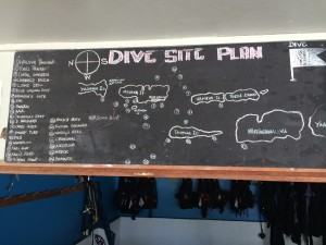 Fanelli_Dive Map